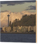 Fall In West Seattle Wood Print