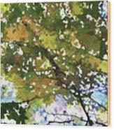 Fall In Woods Wood Print