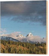 Fall In Wyoming Wood Print