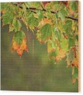 Fall-ing Rain Square Wood Print