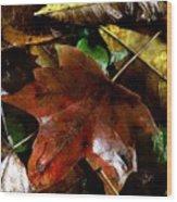 Fall Into Fall Wood Print
