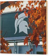 Fall Is Football Wood Print