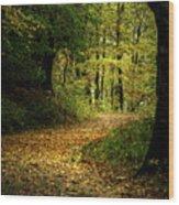 Fall Is Just Around The Corner Wood Print