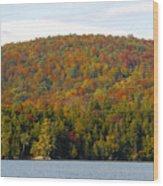 Fall Island Wood Print