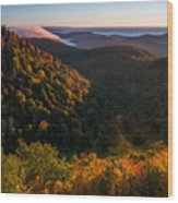 Fall. Wood Print by Itai Minovitz