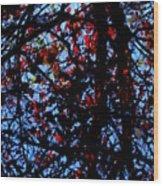 Fall Jewels Wood Print