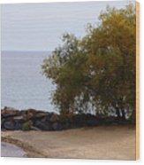 Fall Lake Tree Wood Print