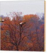 Fall Landing Wood Print