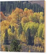 Fall Lands In Western Wyoming Wood Print