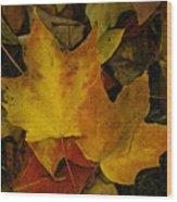 Fall Leaf Litter Wood Print