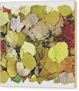 Fall Leaf Vignette Wood Print by JQ Licensing
