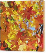 Fall Leaves Background Wood Print