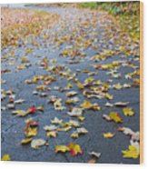 Fall Leaves Wood Print by Michael Tesar