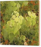Fall Leaves. Wood Print