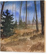 Fall Meadow Wood Print