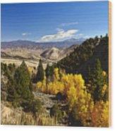 Fall Monitor Pass Wood Print