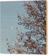 Fall Moon Wood Print