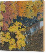 Fall Mosaic II Wood Print by Lucinda  Hansen