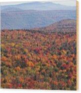 Fall Mountains #3 Wood Print