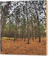 Fall Needle Drop Wood Print