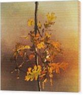 Fall Oak Leaves Wood Print