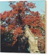 Fall Of Grace Wood Print