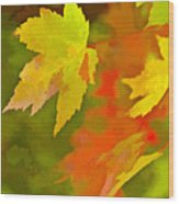 Fall Of Leaf Wood Print