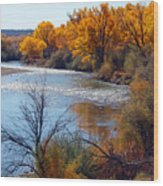 Fall On Animas River Wood Print