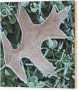 Fall On Ice Wood Print