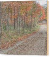 9018 - Fall On Murphy Lake Iv Wood Print