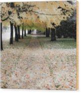 Fall On Oak Street Wood Print