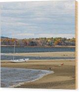 Fall On Plum Island Wood Print
