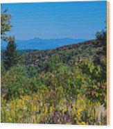 Fall On Sam's Knob Wood Print