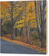 Fall On The Cape Wood Print