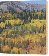 Fall On The Greys River Wood Print