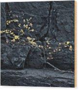 Fall On The Rocks Wood Print