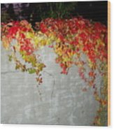 Fall On The Wall Wood Print