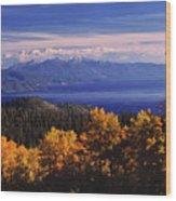 Fall Over East Shore Wood Print