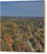 Fall Over Richmond Wood Print