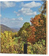 Fall Overlook Wood Print