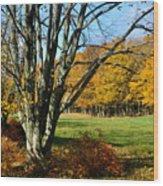 Fall Pasture Wood Print