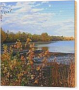 Fall Picture Wood Print