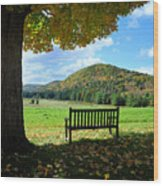 Fall Plains Wood Print