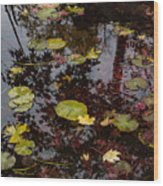 Fall Pond Reflections - A Story Of Waterlilies And Japanese Maple Trees - Take One Wood Print