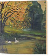 Fall Pond With Swans Wood Print