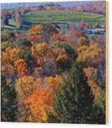 Fall Profusion Wood Print