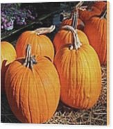 Fall Pumpkins Wood Print