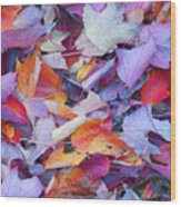 Fall Purples  Wood Print