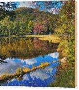 Fall Reflections On Cary Lake Wood Print