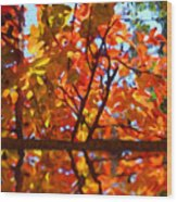 Fall Reflextion Wood Print